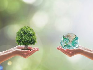 Two hands holding a tree and two holding water