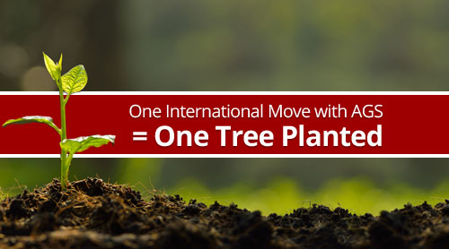 One international move with AGS = one tree planted