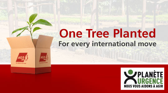 one tree planted for every international move